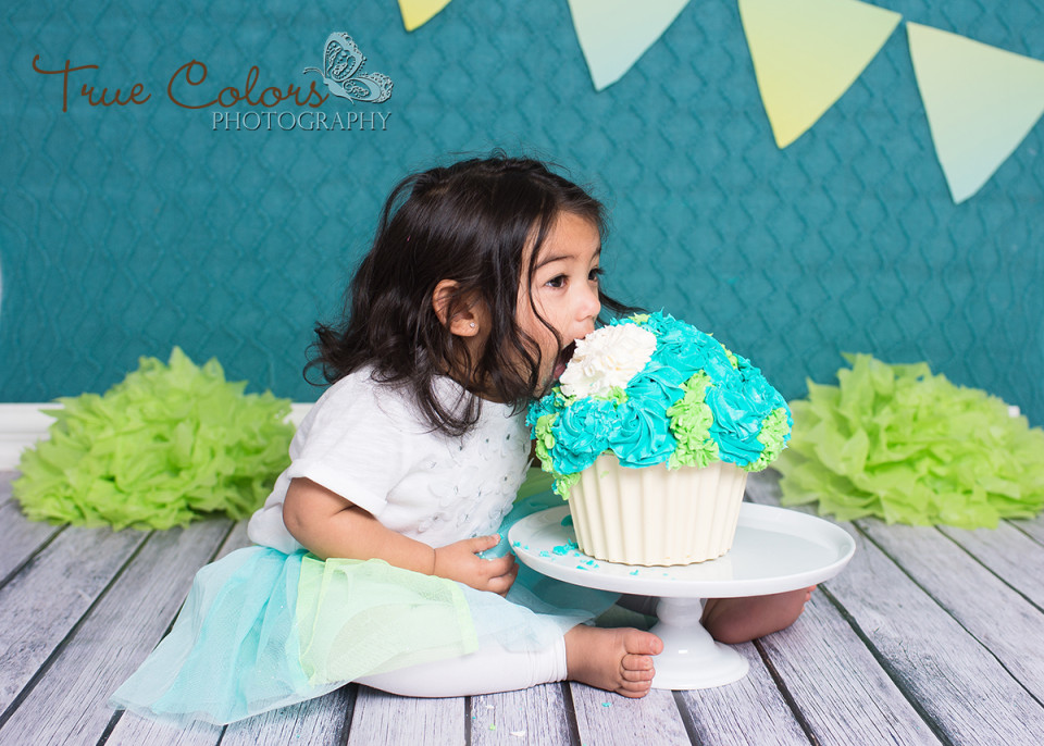 Cake Smash Photo Gallery