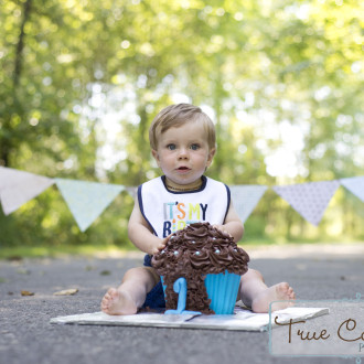 photographer abbotsford Langley fraser valley photography cake smash