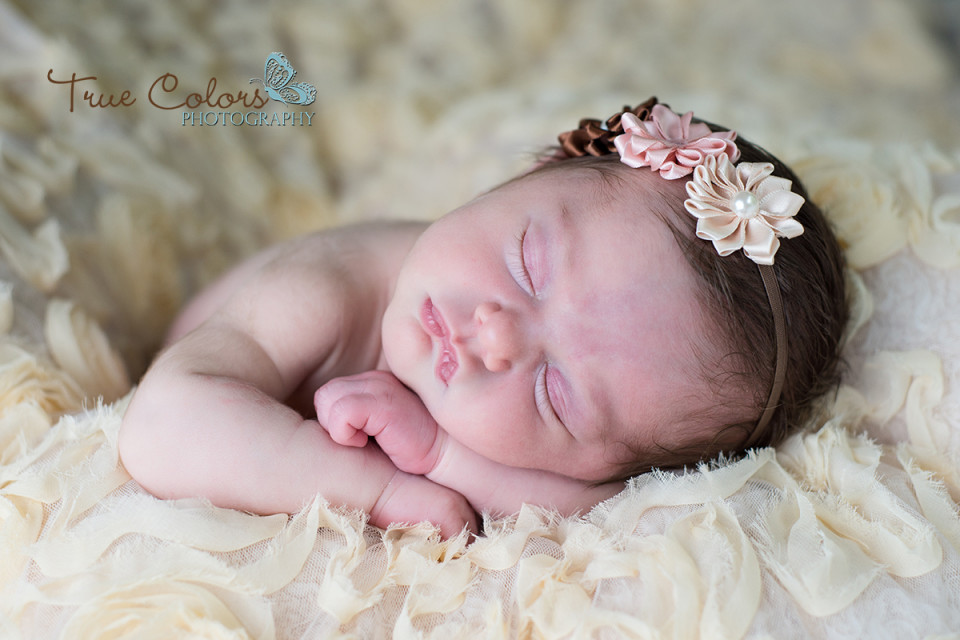 Newborn Photography Abbotsford