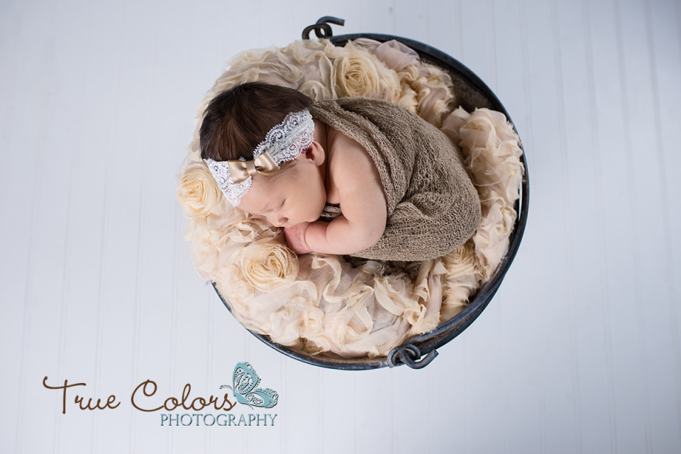 Abbotsford Fraser Valley Newborn Photographer