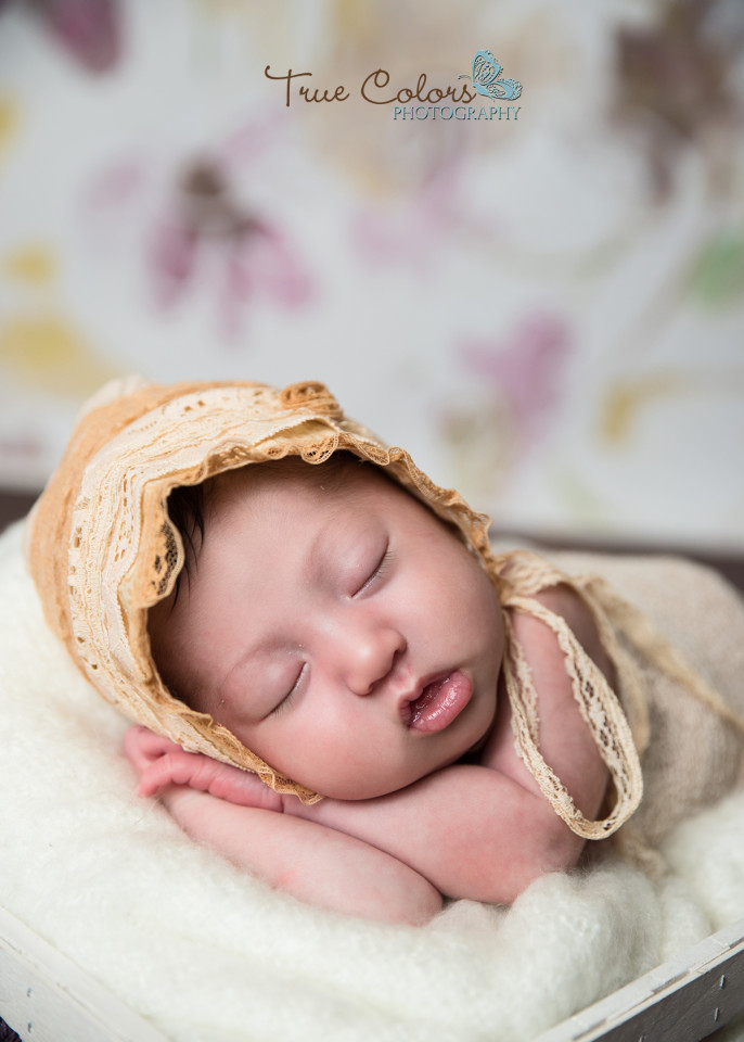 Abbotsford Langley Fraser Valley Newborn Photographer Baby photos
