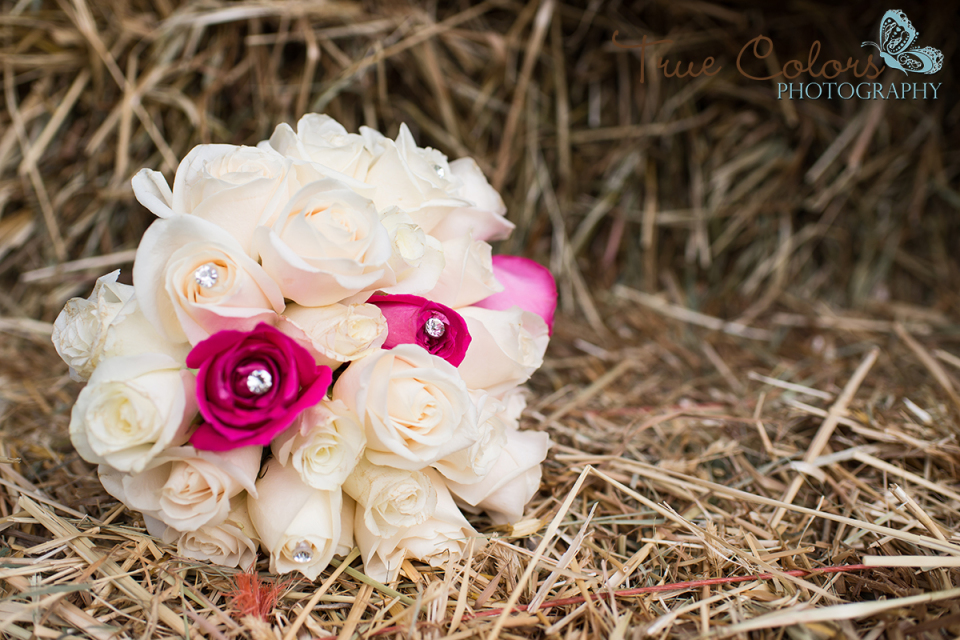 Aldergrove Langley Wedding Photographer