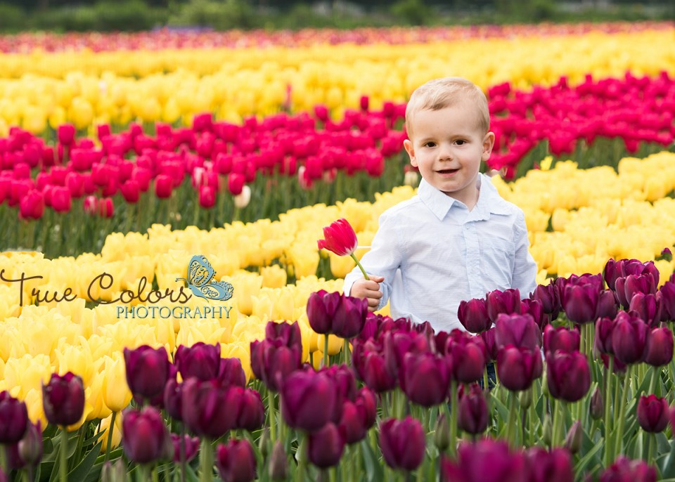 Abbotsford Langley Fraser valley childrens photographer